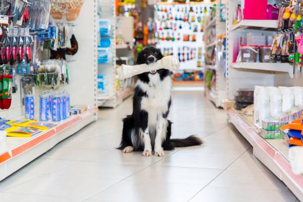 negozio_per_animali_2